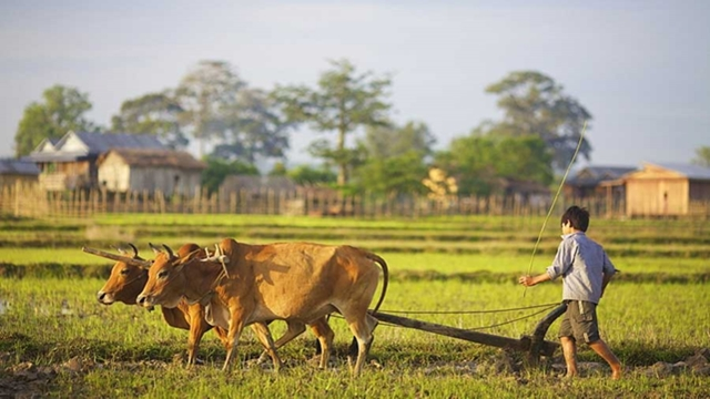 Pepping up integrated rural development process