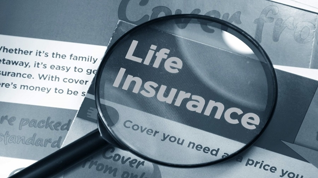 Life insurers to come under special audit