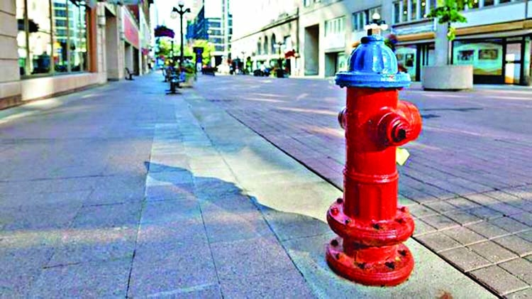 Fire hydrants on roads needed