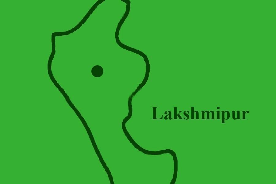 Lakshmipur man pleads guilty to killing daughter