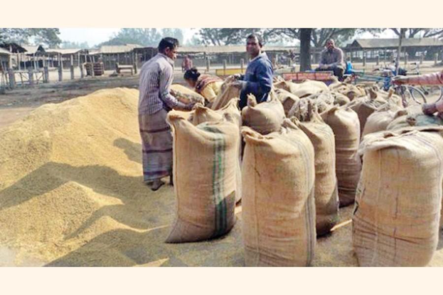 Rice, paddy procurement witnesses poor progress