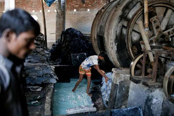 Tanneries releasing excess chromium likely to be shuttered