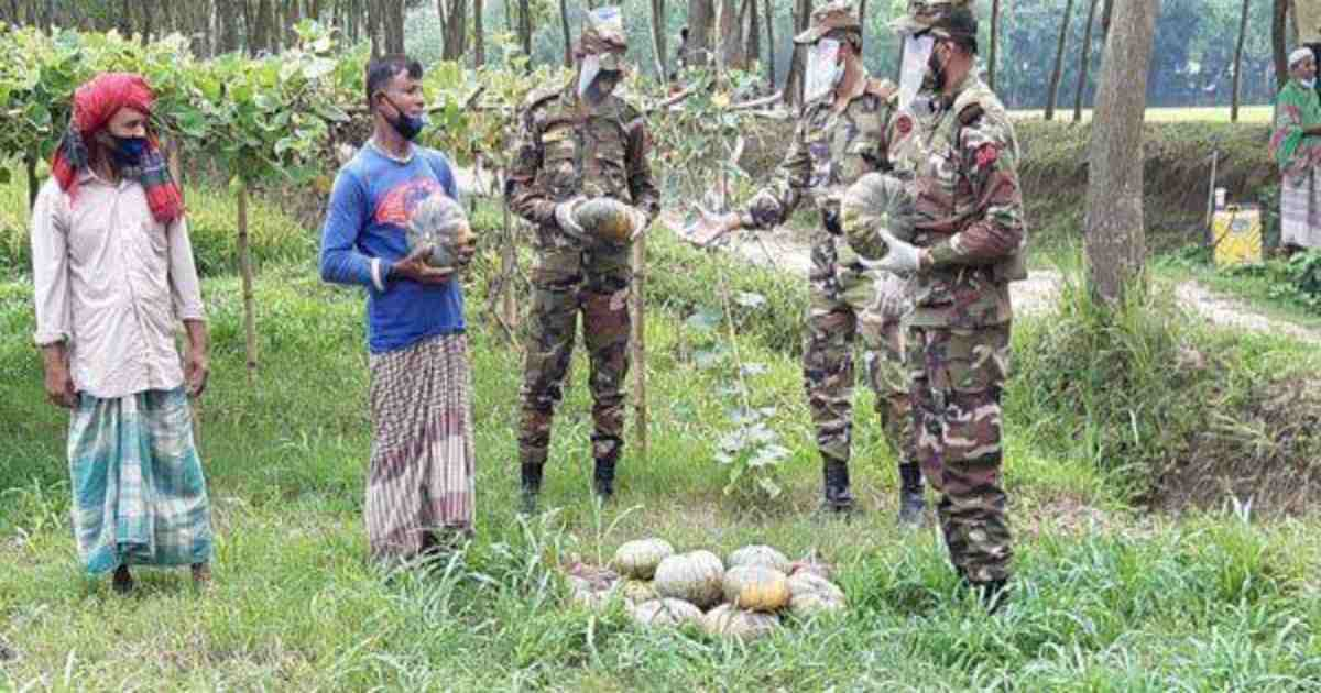 Army's vegetable procurement reduces farmers' woes
