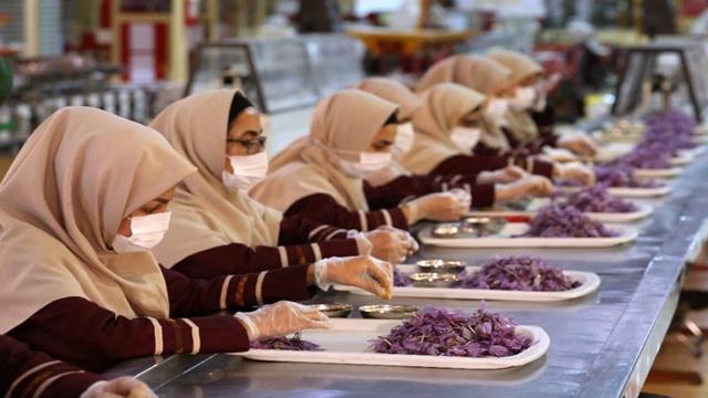 Iran's saffron seeks global recognition