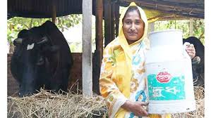 ADB, Pran Dairy sign $10m deal to support dairy value chain