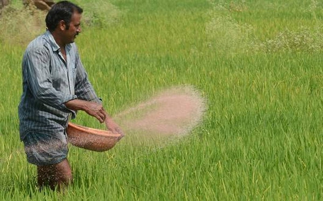 Cabinet body okays buying non-urea fertilisers