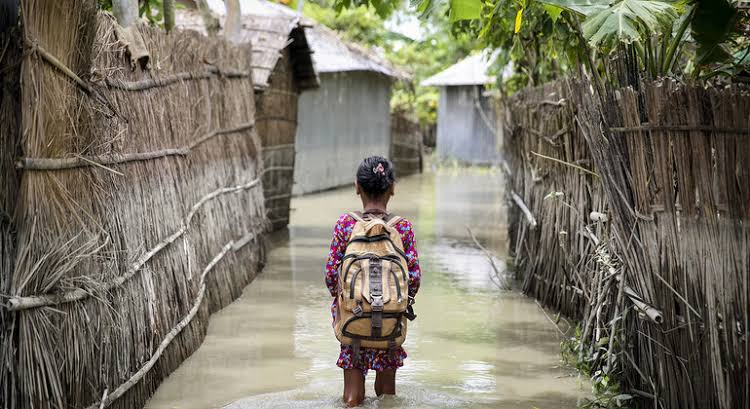 Progressive climate policy can reduce extreme poverty: study