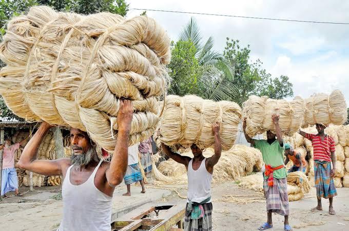 Magura jute growers happy with fair price