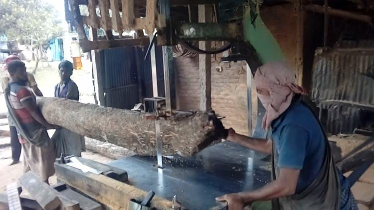 Govt losing revenue as 90pc Rangpur sawmills unlicensed