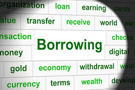 Govt's bank borrowing balloons as ADP execution revs up