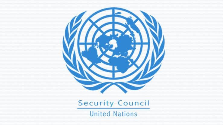 UAE, Brazil, 3 other countries elected to UN Security Council