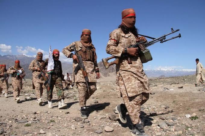 The truth behind Al-Qaeda's silence in Afghanistan