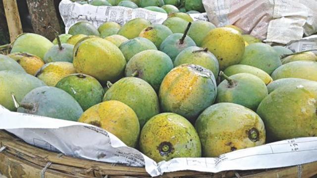 Khirsa mango to get GI tag soon