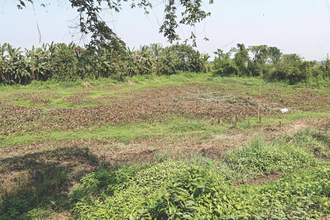 Natural reservoir runs dry