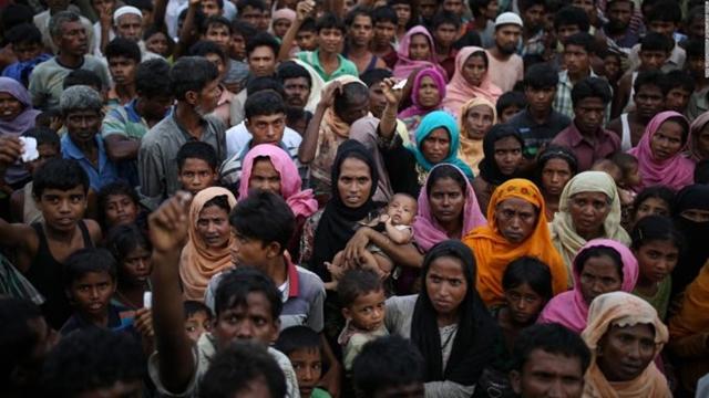 More global focus needed on Rohingya repatriation: Japanese expert