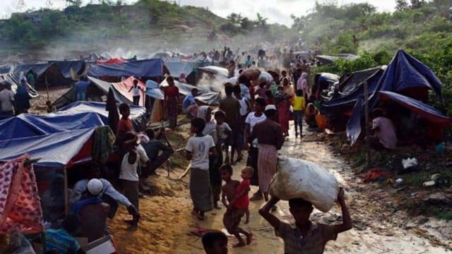 Rohingya repatriation set to start today