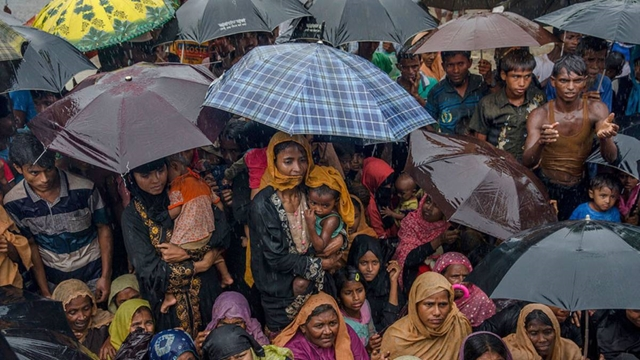 Tokyo moves over Rohingya issue; FM Taro Kono to visit camps